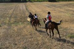 centro equestre toscana