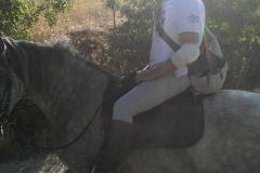 passeggiata a cavallo centro equestre san giorgio cinigiano