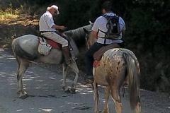 escursione centro equestre san giorgio