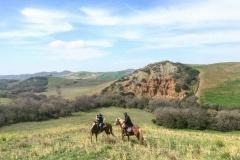 passeggiate a cavallo cinigiano Grosseto