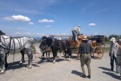 gara a cavallo del Centro Equestre San Giorgio Cinigiano (GR)