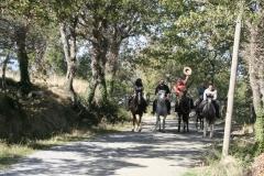 escursioni a cavallo in provincia di Grosseto