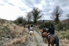 passeggiata cavallo