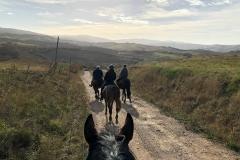 centro equestre provincia Grosseto