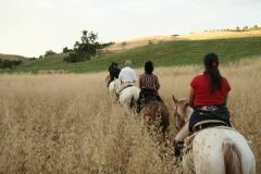 andare a cavallo in Maremma