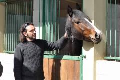 pensione cavalli Cinigiano Grosseto