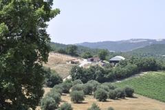 scuderia Centro Equestre San Giorgio Cinigiano (GR)