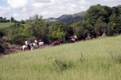 centro equestre san giorgio cingiano