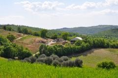 struttura-san-giorgio-cinigiano
