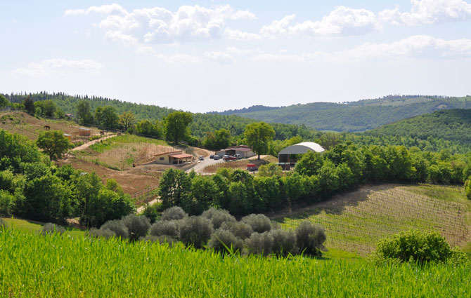Centro Equestre San Giorgio di Cinigiano