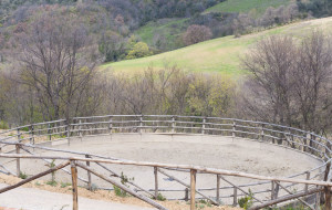 tondino in sabbia per cavalli a Cinigiano Maremma
